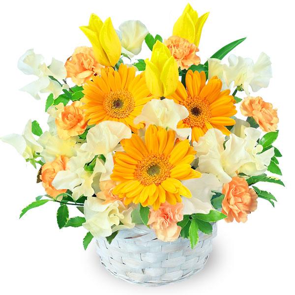 【チューリップ特集】春のイエローアレンジメント(イエロー&オレンジ) 511272 |花キューピットの2020チューリップ特集特集
