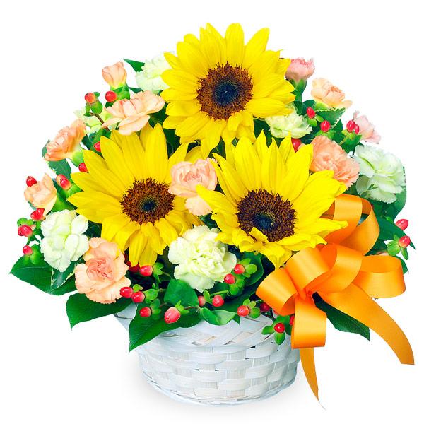 【結婚記念日】ひまわりのアレンジメント 511376 |花キューピットの結婚記念日プレゼント特集2020