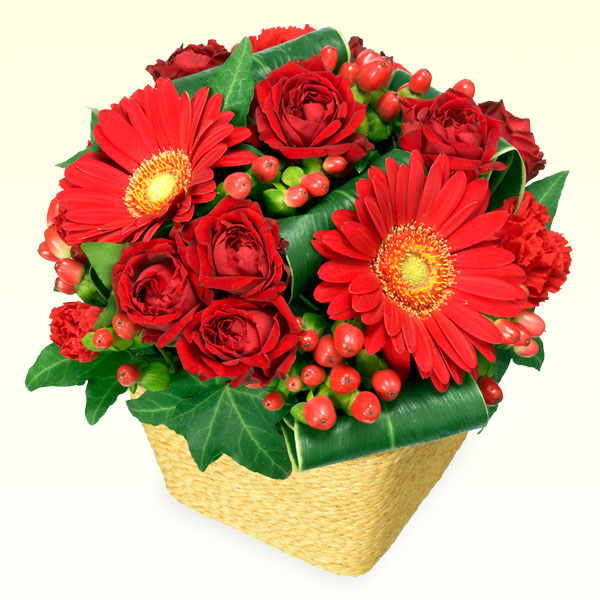 【クリスマス】赤ガーベラと赤バラのアレンジメント 511507 |花キューピットのクリスマスプレゼント特集2020