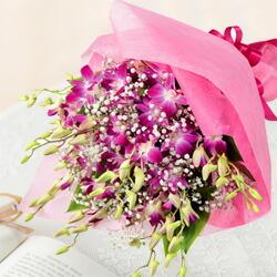 【秋の誕生日】ピンクデンファレの花束 511612  花キューピットの秋のお祝いプレゼント特集2019