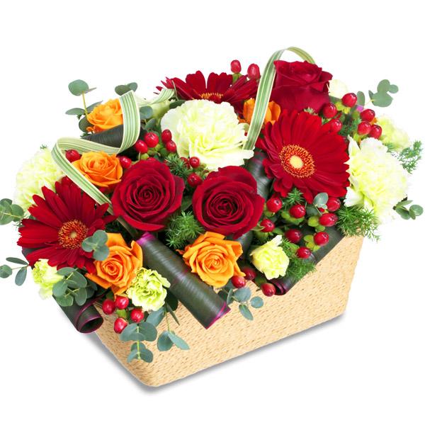 【クリスマス】赤バラのスクエアバスケット 511734 |花キューピットのクリスマスプレゼント特集2020