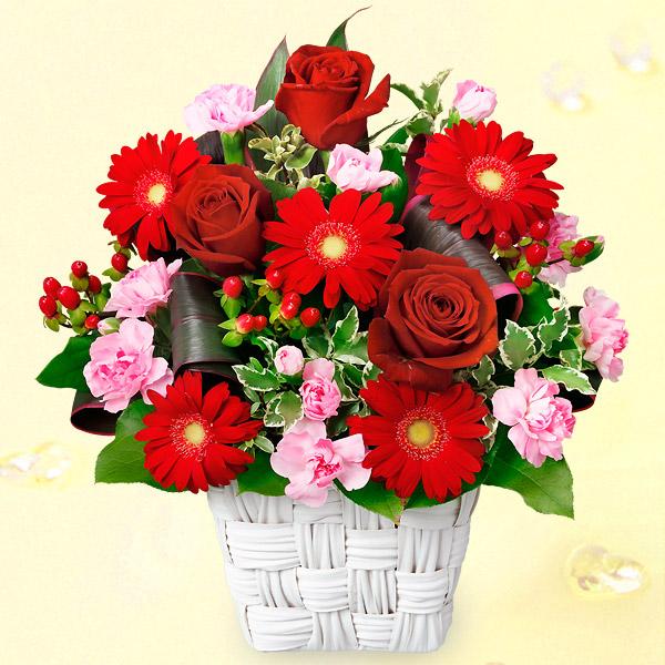 【クリスマス】赤バラと赤ガーベラのスクエアバスケット 511904 |花キューピットのクリスマスプレゼント特集2020