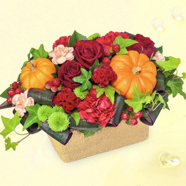 【秋の花贈り】ハロウィンのパンプキンアレンジメント 511915 |花キューピットの2019秋のお祝いプレゼント特集
