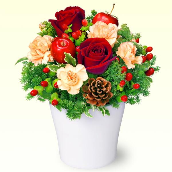 【クリスマスフラワー】赤バラのウィンターアレンジメント 511919 |花キューピットの2019クリスマスフラワー特集