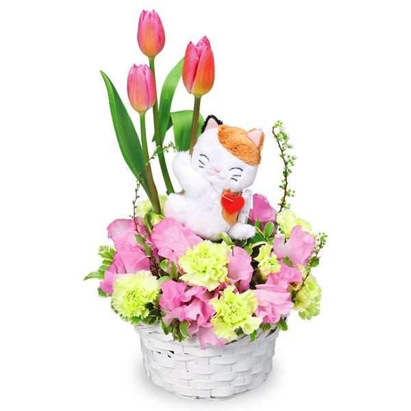【チューリップ特集】三毛猫のチューリップアレンジメント(ピンク) 511933 |花キューピットの2020チューリップ特集特集