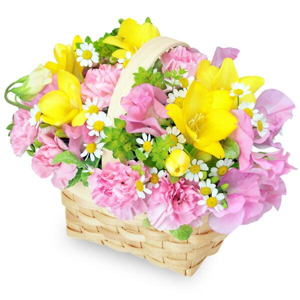 【春の誕生日】フリージアとスイートピーのバスケット 511982 |花キューピットの2020春の誕生日特集