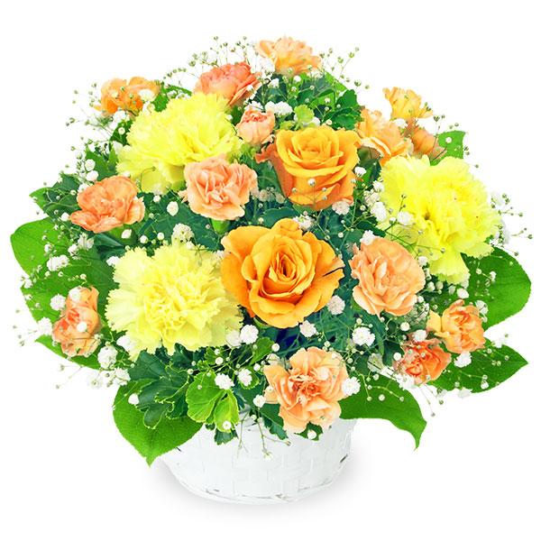 【秋の結婚記念日】オレンジバラのアレンジメント 511999 |花キューピットの2019秋のお祝いプレゼント特集