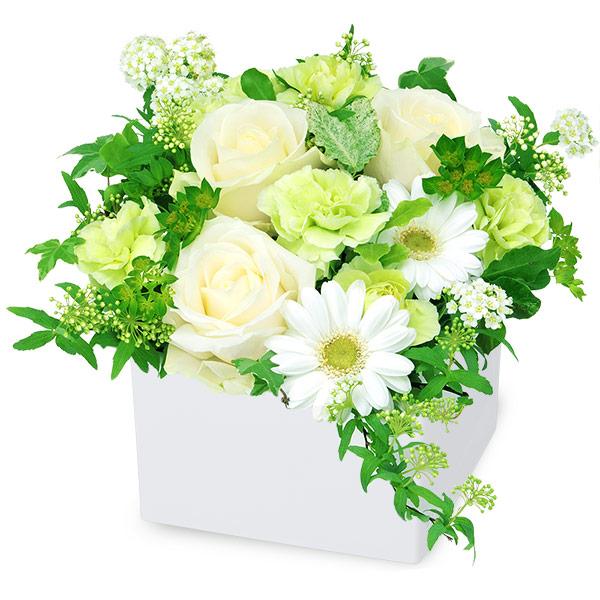 【秋の結婚記念日】白バラのキューブアレンジメント 512022 |花キューピットの2019秋のお祝いプレゼント特集