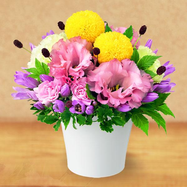 【敬老の日】お月見風アレンジメント 512028 |花キューピットの2019敬老の日プレゼント特集