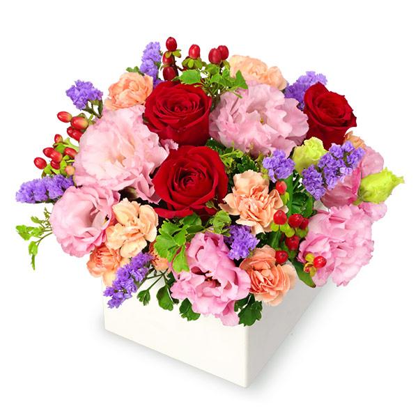 【秋の花贈り】赤バラとトルコキキョウのキューブアレンジメント 512042 |花キューピットの2019秋のお祝いプレゼント特集