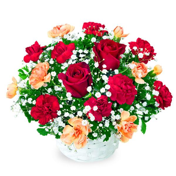 【クリスマスフラワー】赤バラのアレンジメント 512048 |花キューピットの2019クリスマスフラワー特集