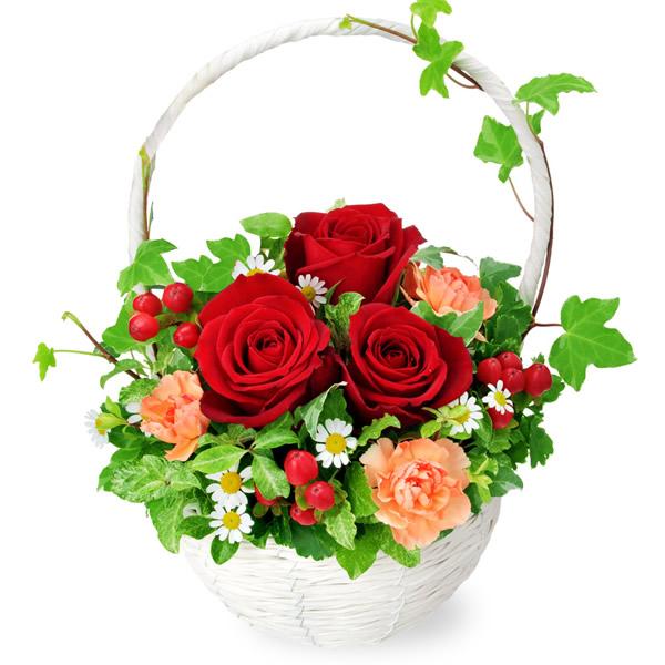 【秋の結婚記念日】赤バラのナチュラルバスケット 512056 |花キューピットの2019秋のお祝いプレゼント特集