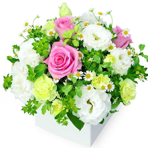 【秋の誕生日】ピンク&ホワイトのキューブアレンジメント 512060  花キューピットの秋のお祝いプレゼント特集2019