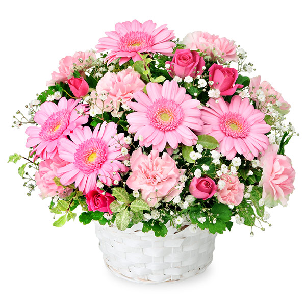【秋の結婚記念日】ピンクガーベラのアレンジメント 512065 |花キューピットの2019秋のお祝いプレゼント特集