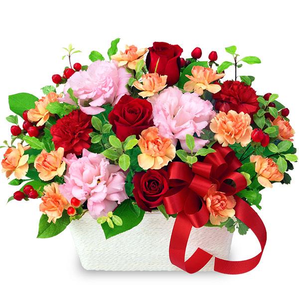 【クリスマスフラワー】赤バラとトルコキキョウのアレンジメント 512085 |花キューピットの2019クリスマスフラワー特集