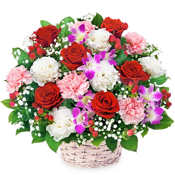 【結婚記念日】赤バラとデンファレのアレンジメント 512109 |花キューピットの結婚記念日プレゼント特集2020