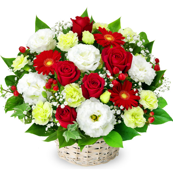 【秋の結婚記念日】赤バラと赤ガーベラのアレンジメント 512111 |花キューピットの2019秋のお祝いプレゼント特集