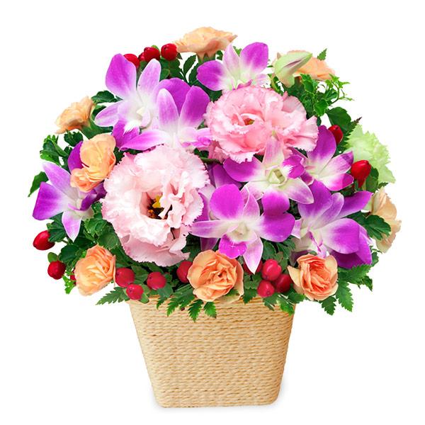 【秋の花贈り】デンファレとトルコキキョウのアレンジメント 512113 |花キューピットの2019秋のお祝いプレゼント特集