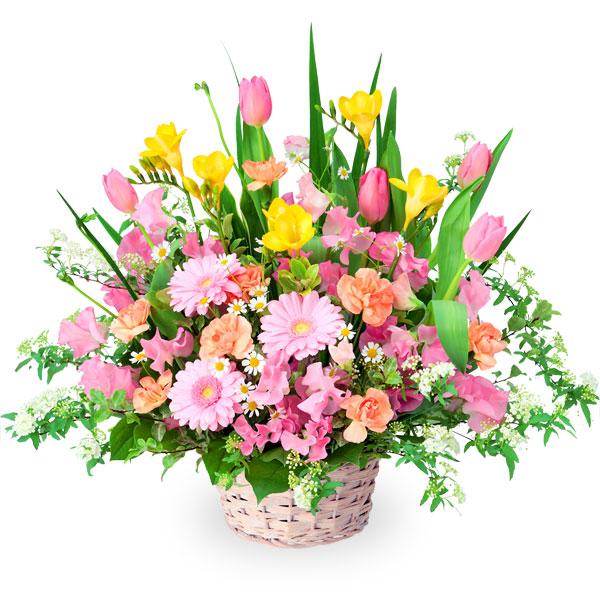 【チューリップ特集】春の花のミックスアレンジメント 512154 |花キューピットの2020チューリップ特集特集