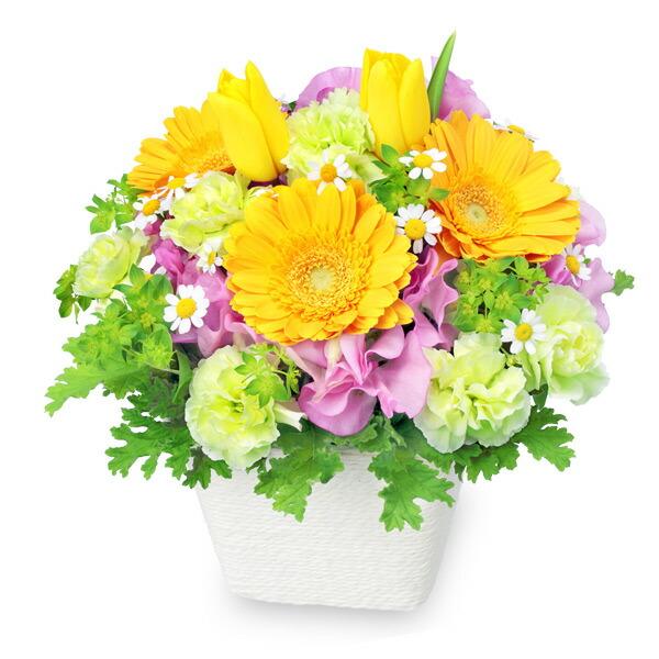 【チューリップ特集】春のガーデンアレンジメント(イエロー) 512156 |花キューピットの2020チューリップ特集特集