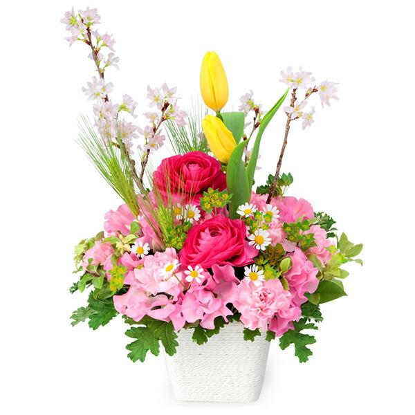 【春の卒業・入学祝い】桜のカラフルアレンジメント 512158 |花キューピットの2020春の卒業・入学祝い特集