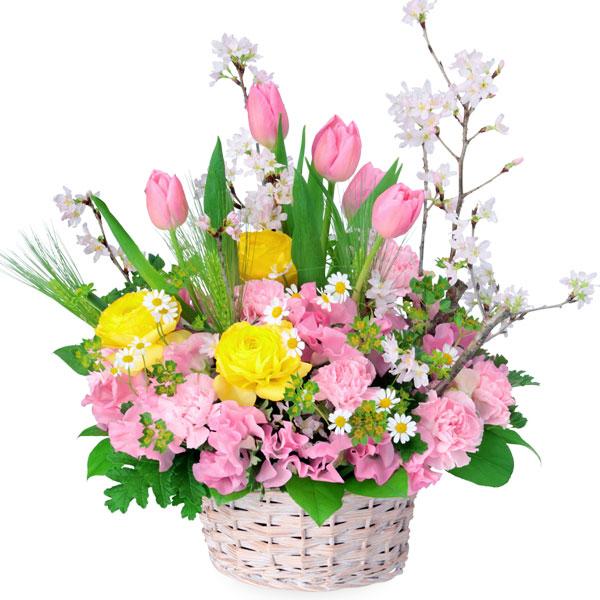 【チューリップ特集】桜のミックスアレンジメント 512160 |花キューピットの2020チューリップ特集特集