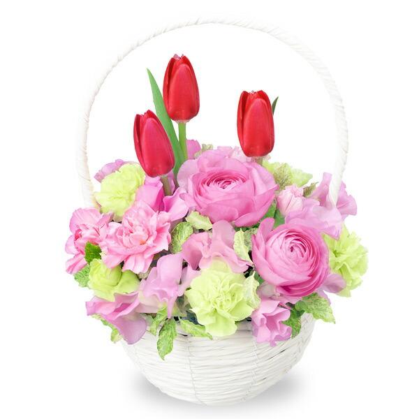 【チューリップ特集】赤チューリップのナチュラルバスケット 512167 |花キューピットの2020チューリップ特集特集