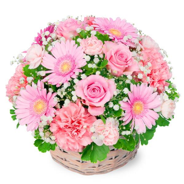 【バレンタイン特集】ピンクのアレンジメント 512197 |花キューピットのフラワーバレンタイン特集2020