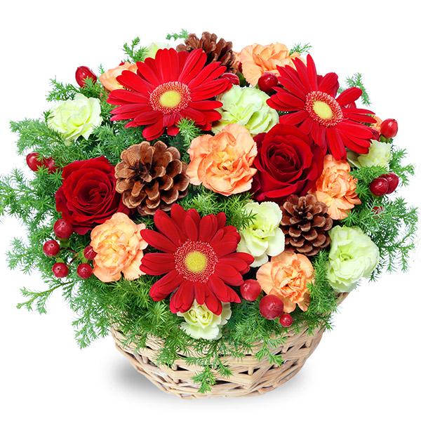 【クリスマス】クリスマスのアレンジメント 512271 |花キューピットのクリスマスプレゼント特集2020