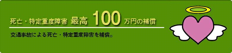 IBF自転車安心保険 死亡保障・特定重度障害最高100万円