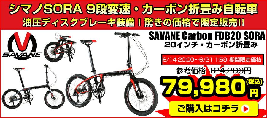 SAVANE CARBON FDB20-SORA