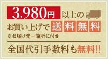 3,980円以上のお買い上げで送料無料(※お届け先一箇所に付き) 全国代引手数料も無料!!