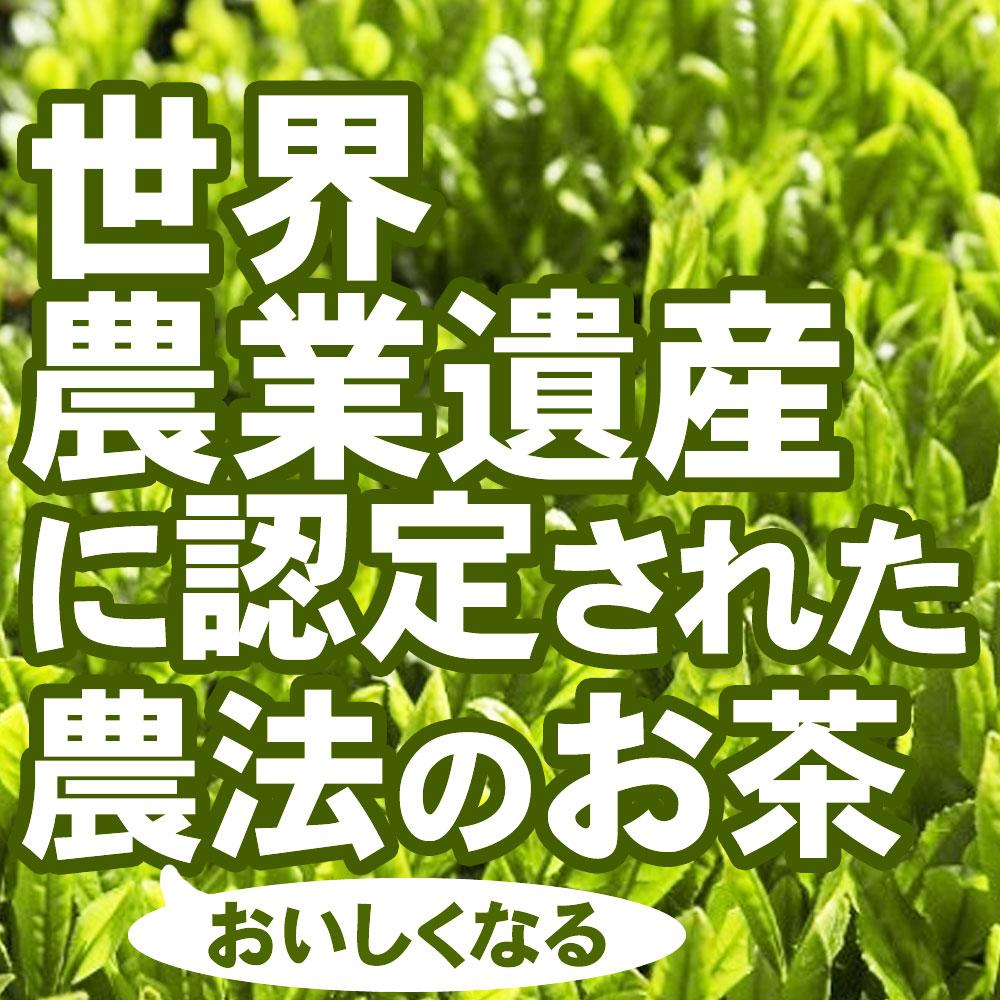 世界農業遺産に認定された 静岡 茶草場農法でできたお茶