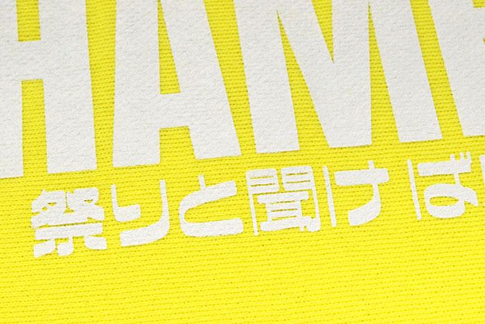 HTML ZERO3エイチティエムエル ゼロスリーのパンツ HTML ZERO3×STARDOM10