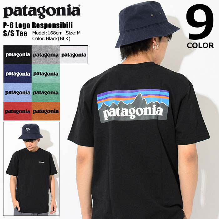 PatagoniaパタゴニアのTシャツ P-6 Logo Responsibili01