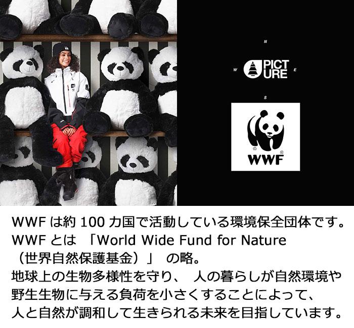 PICTUREピクチャーのジャケット WWF Anton06