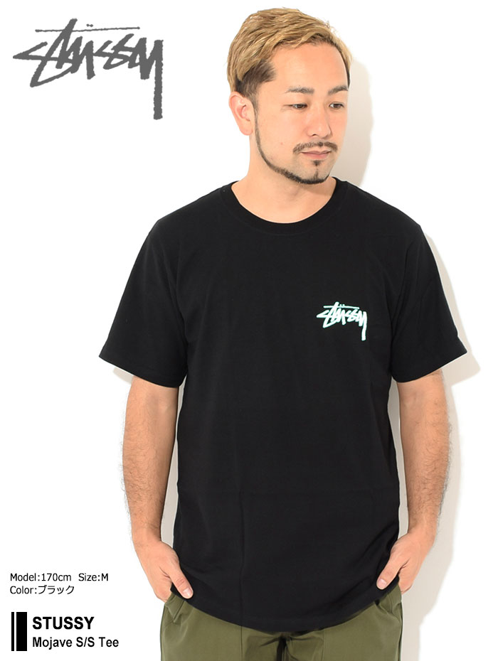 STUSSYステューシーのTシャツ Mojave01