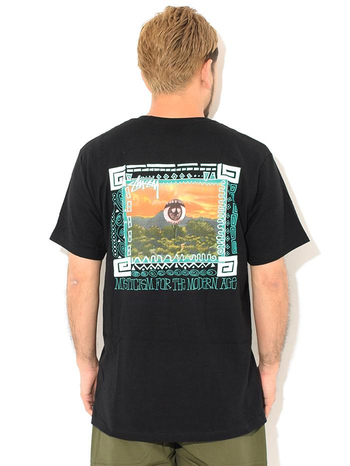 STUSSYステューシーのTシャツ Mojave02
