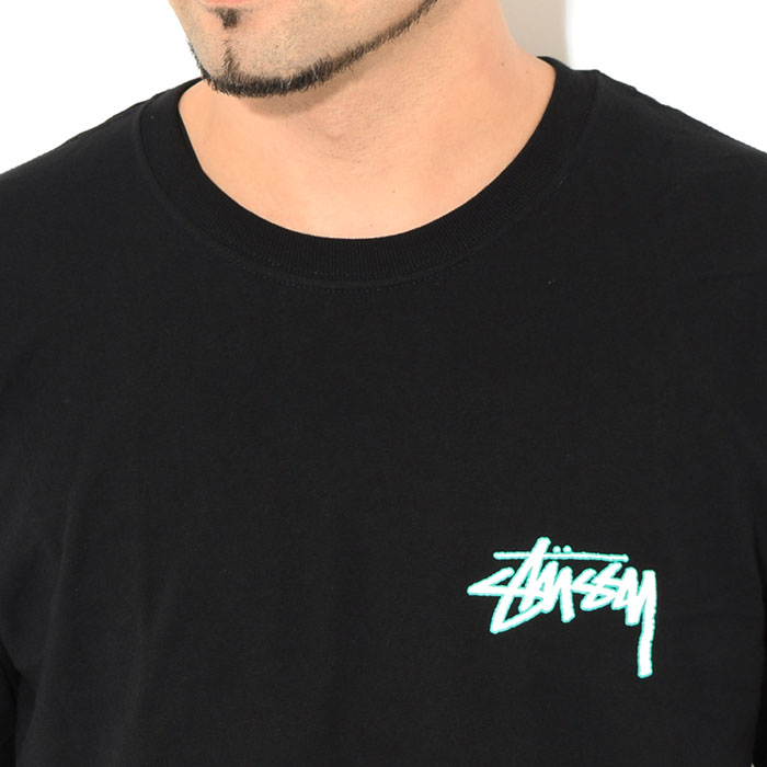 STUSSYステューシーのTシャツ Mojave03