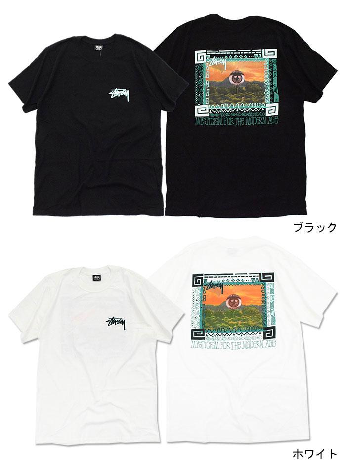 STUSSYステューシーのTシャツ Mojave04