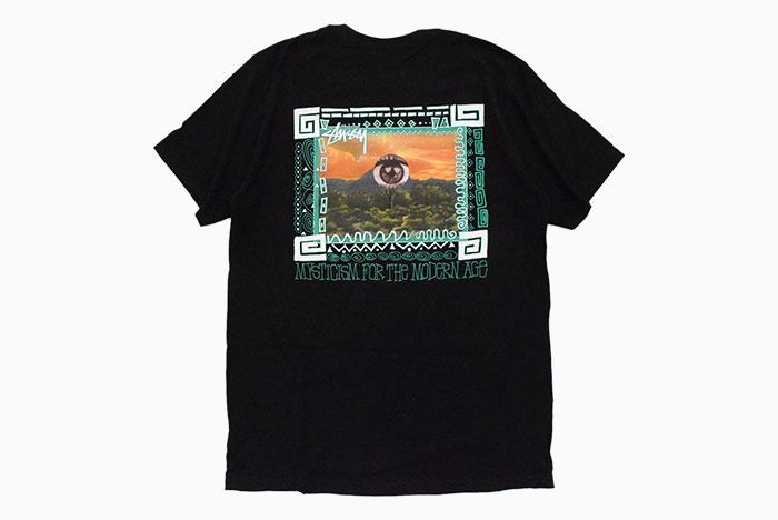 STUSSYステューシーのTシャツ Mojave07