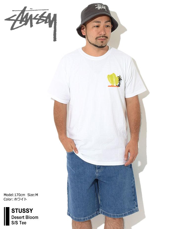 STUSSYステューシーのTシャツ Desert Bloom01