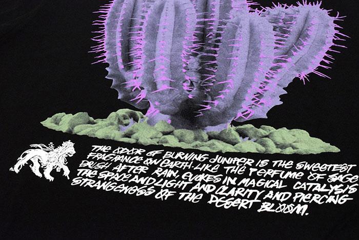 STUSSYステューシーのTシャツ Desert Bloom11