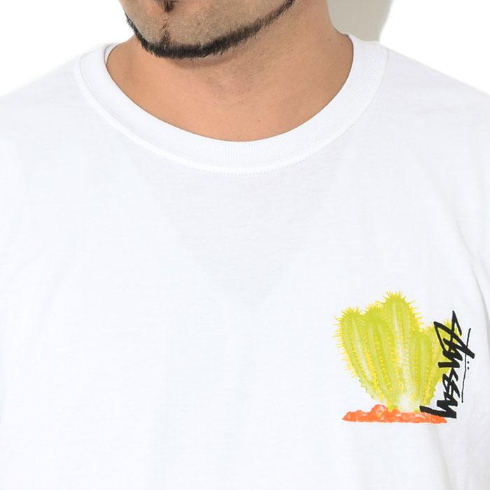 STUSSYステューシーのTシャツ Desert Bloom03