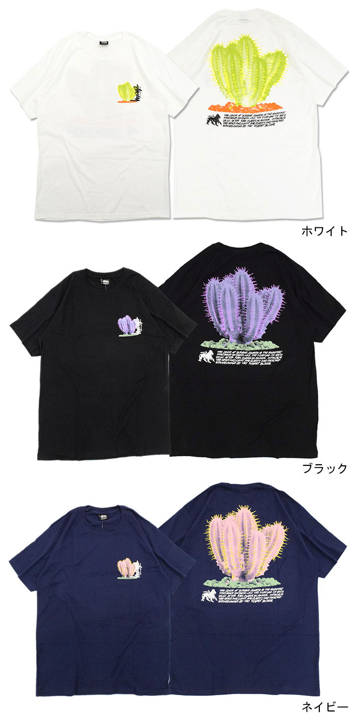 STUSSYステューシーのTシャツ Desert Bloom04