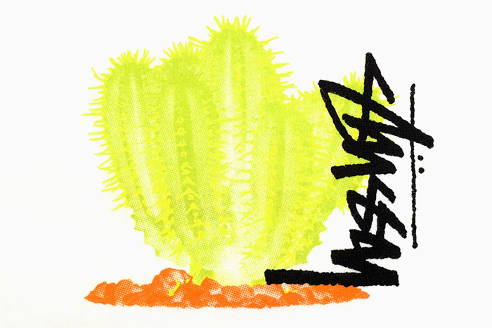 STUSSYステューシーのTシャツ Desert Bloom05