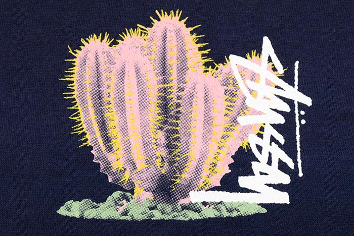 STUSSYステューシーのTシャツ Desert Bloom07