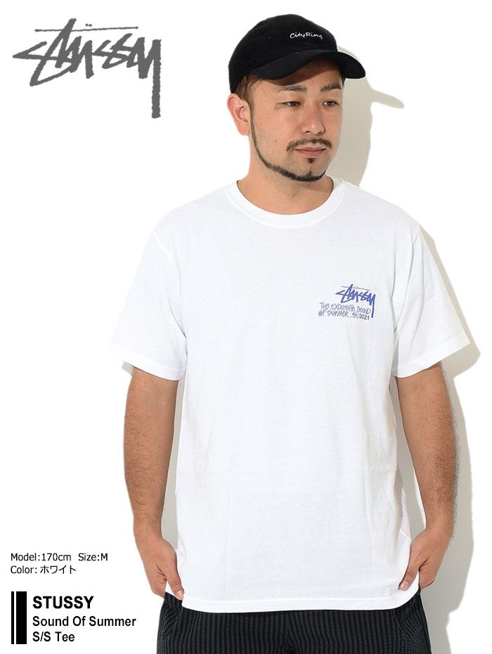 STUSSYステューシーのTシャツ Sound Of Summer01