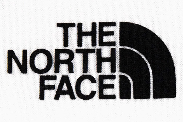 THE NORTH FACEザ ノースフェイスのTシャツ Back Square Logo10