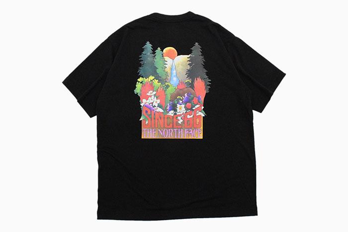 THE NORTH FACEザ ノースフェイスのTシャツ Yosemite Falls11